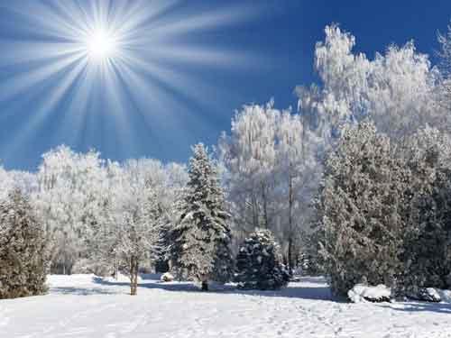 شعر فصل زمستان