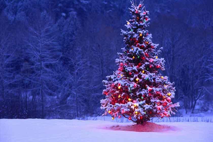 پیام شادباش کریسمس