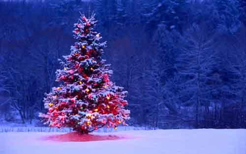 عکس های مناسبتی کریسمس