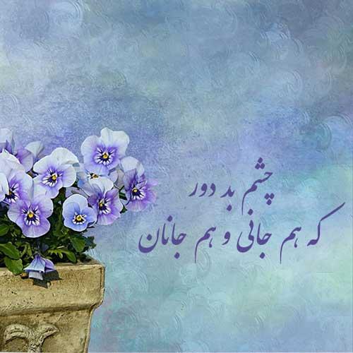 عکس نوشته گل فانتزی با شعر عاشقانه حافظ