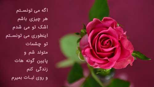 عکس پروفایل گل رز صورتی با نوشته عاشقانه