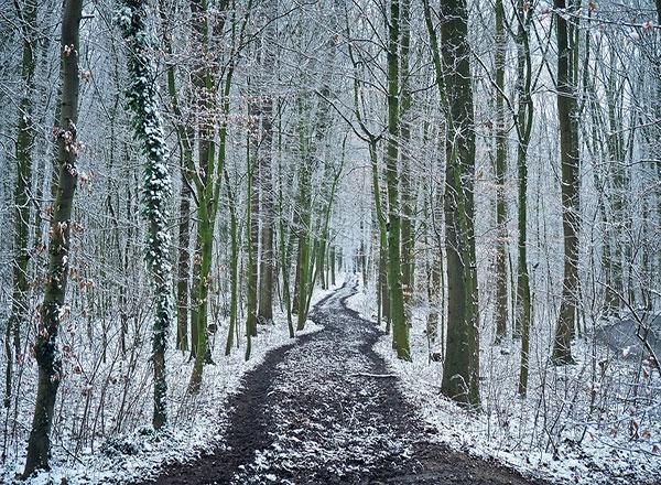 طبیعت زمستانی کوهها