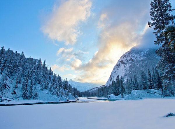 منظره پوشیده از برف