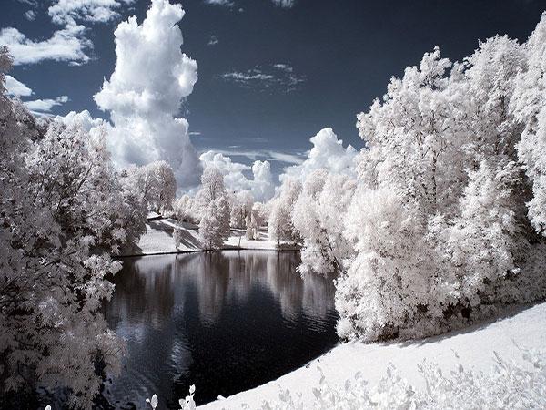 زمستان در کنار برگهای پاییزی