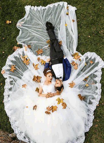 عکس عروس و داماد در فضای سبز