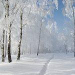 عکس های زمستانی + متن های خاص زمستانی 98