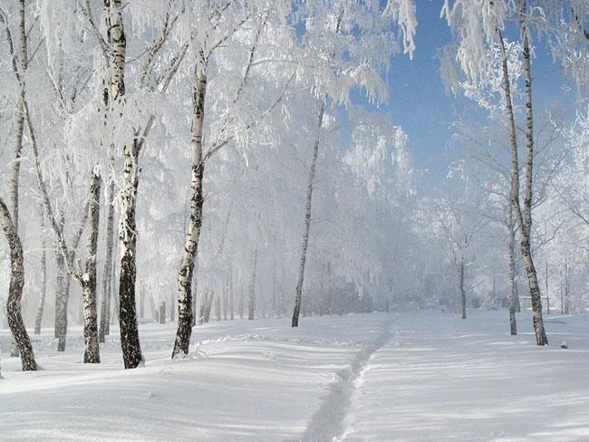 تصویر از عکس های زمستانی + متن های خاص زمستانی 98