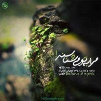 عکس نوشته رحمت الهی + متن مناجات با خدا