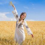 Beautiful photo on wheat field 12 1 150x150 1