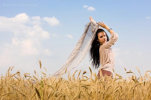 Beautiful photo on wheat field 3 1