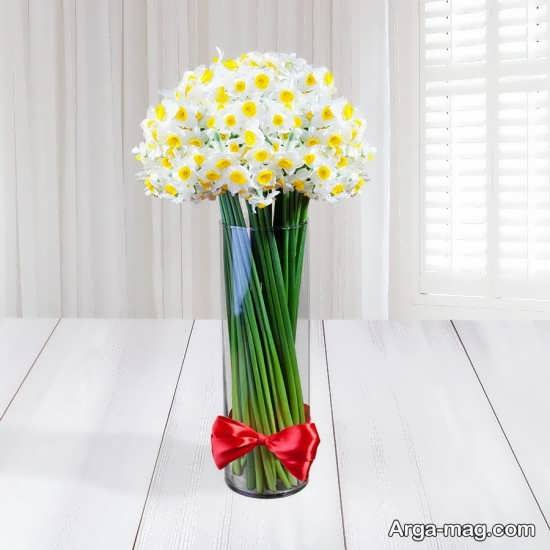 Narges flower photo 10