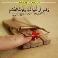 عکس پروفایل آیه های قرآنی + جملات حکیمانه از قرآن