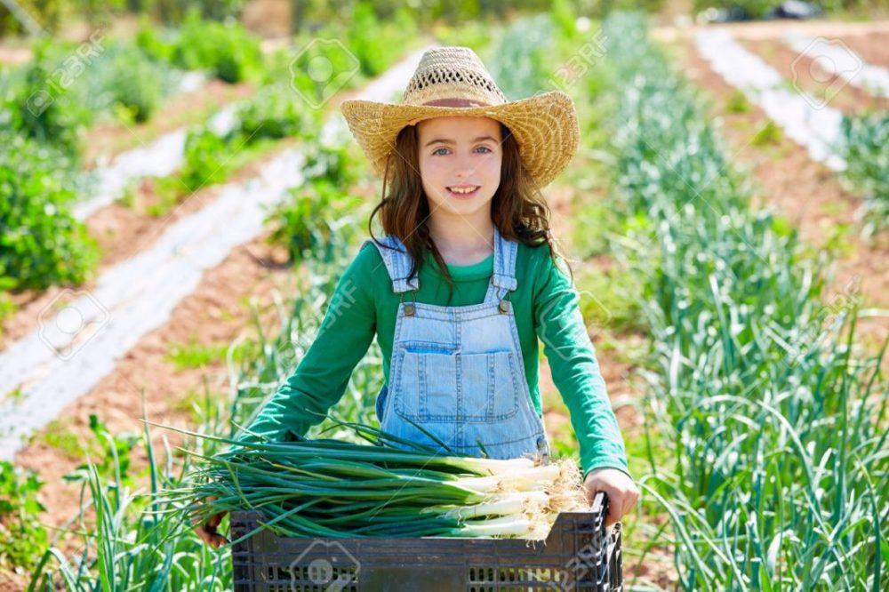 girl Wheat field figure 1 1068x711 1 scaled
