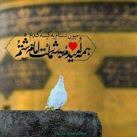 عکس نوشته دلتنگ حرم امام رضا + جملات دلتنگی حرم