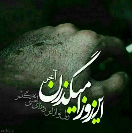 1106943668 talab org