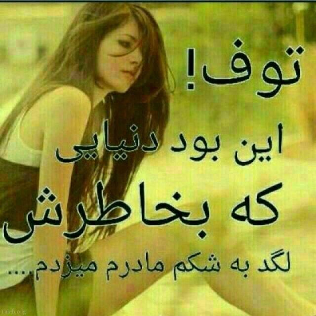 118475081 talab org