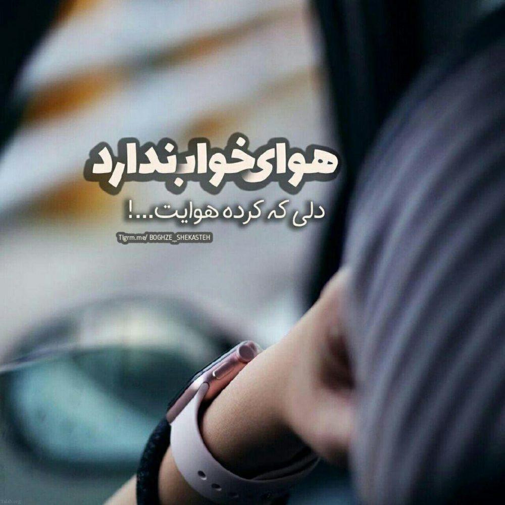 142730796 talab org