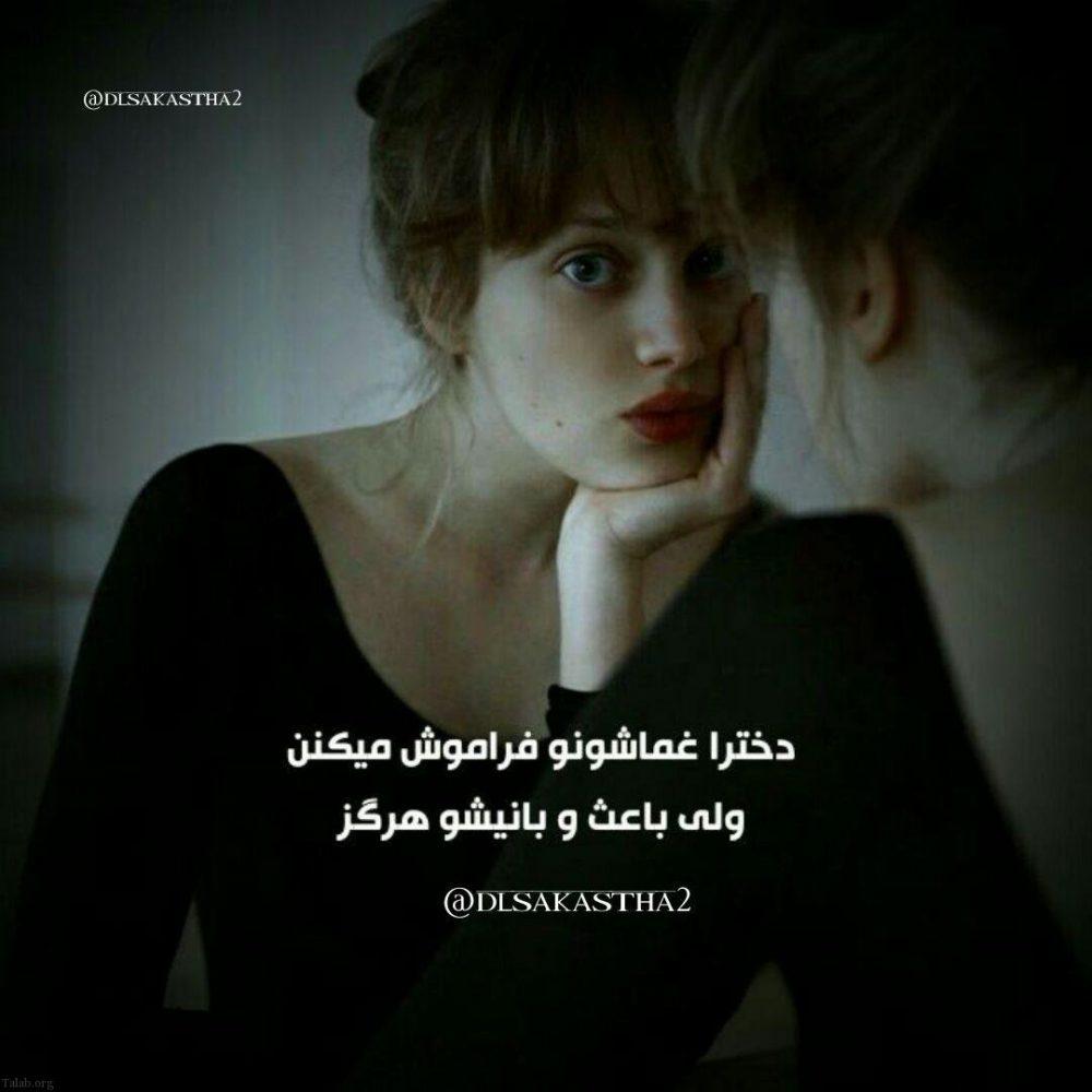 164653247 talab org