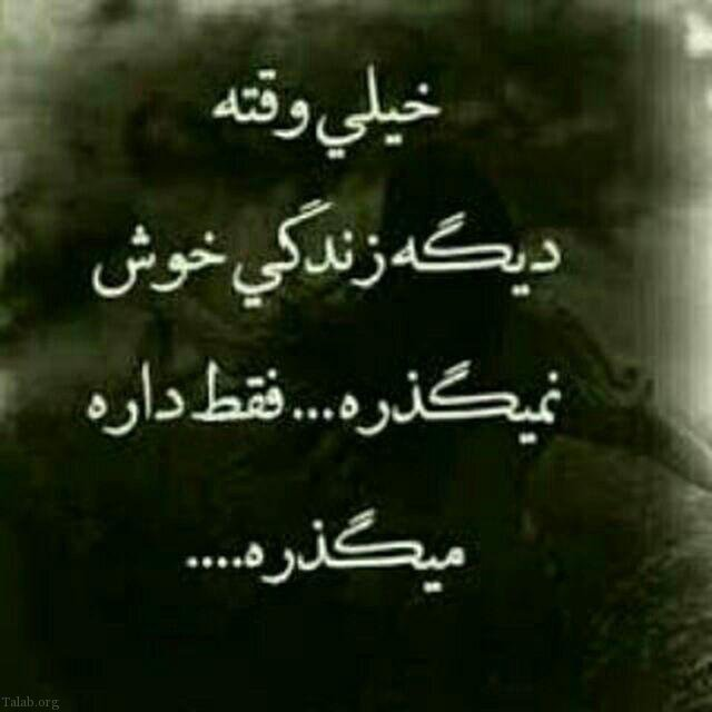 1854672458 talab org