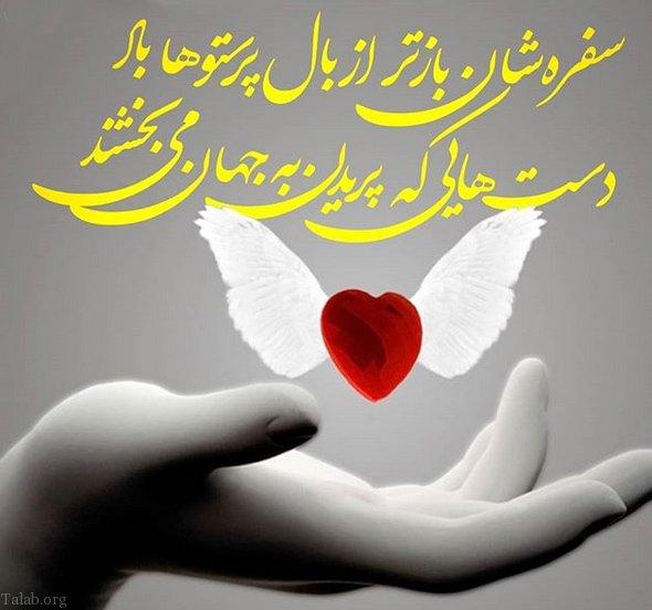 1871702537 talab org