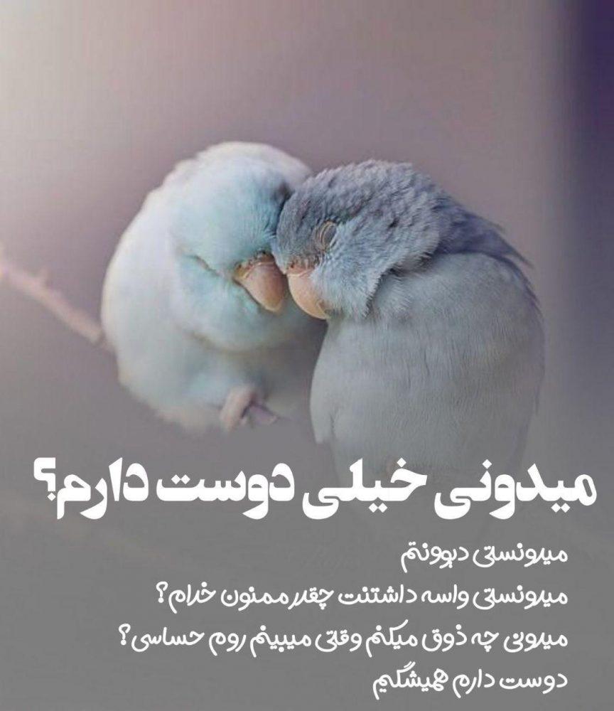 190017692 talab org