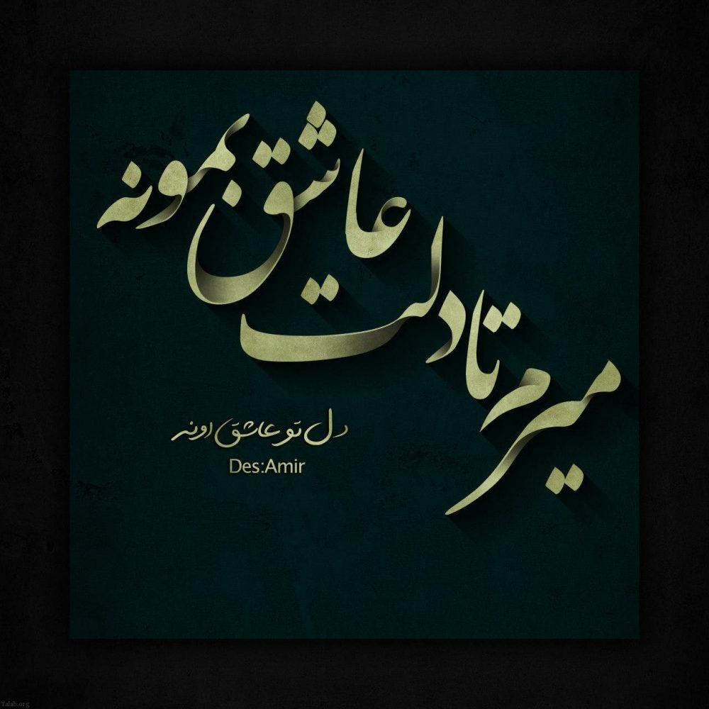 2068977830 talab org