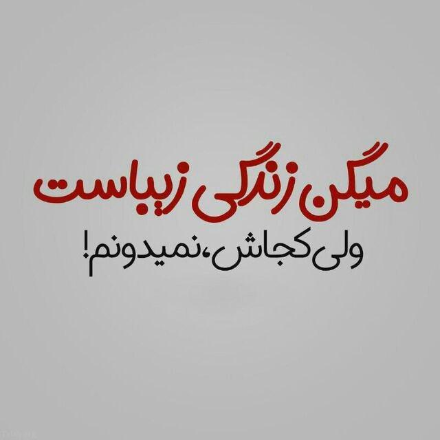 310056798 talab org