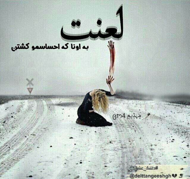 3238570 talab org