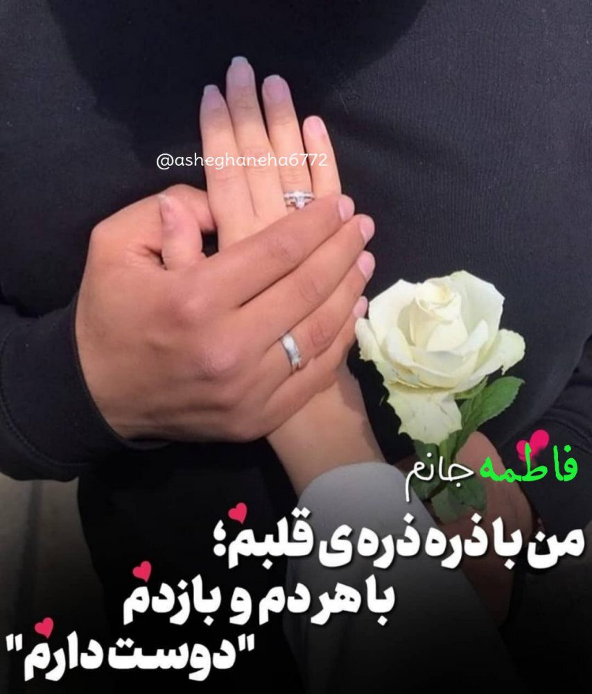 474951320 talab org