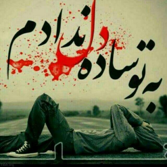 617647398 talab org