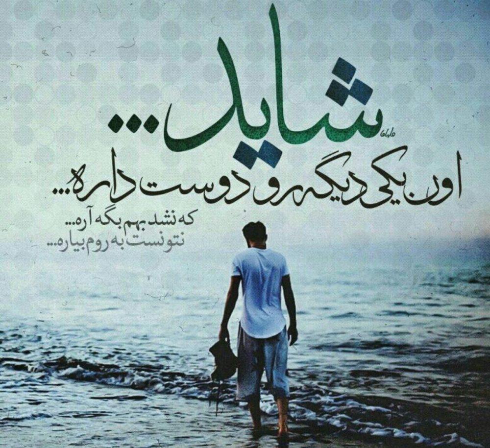 642196253 talab org