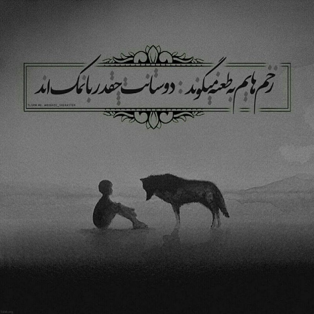 702215478 talab org