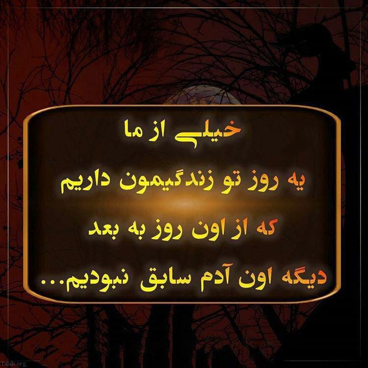 733347776 talab org