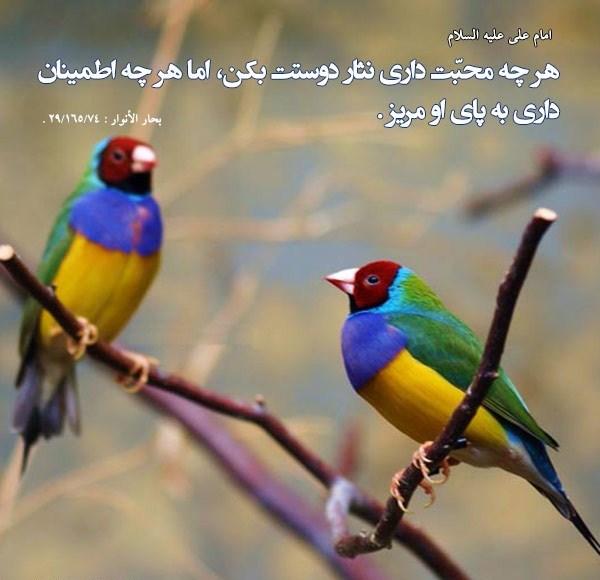 mohabbat photo 7