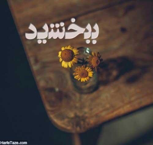 profile bebakhshid 4